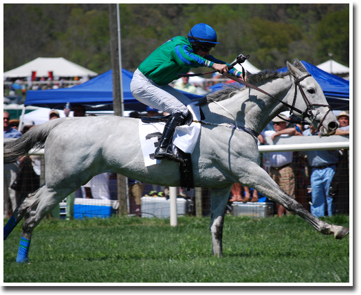 48th Annual Atlanta SteepleChase